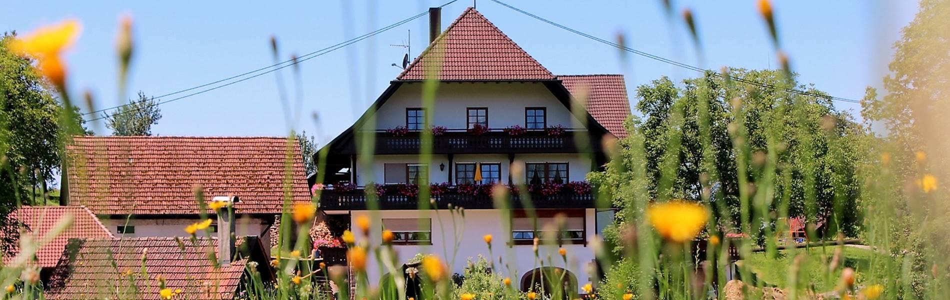 hugeseppehof-ferienwohnungen-schwarzwald