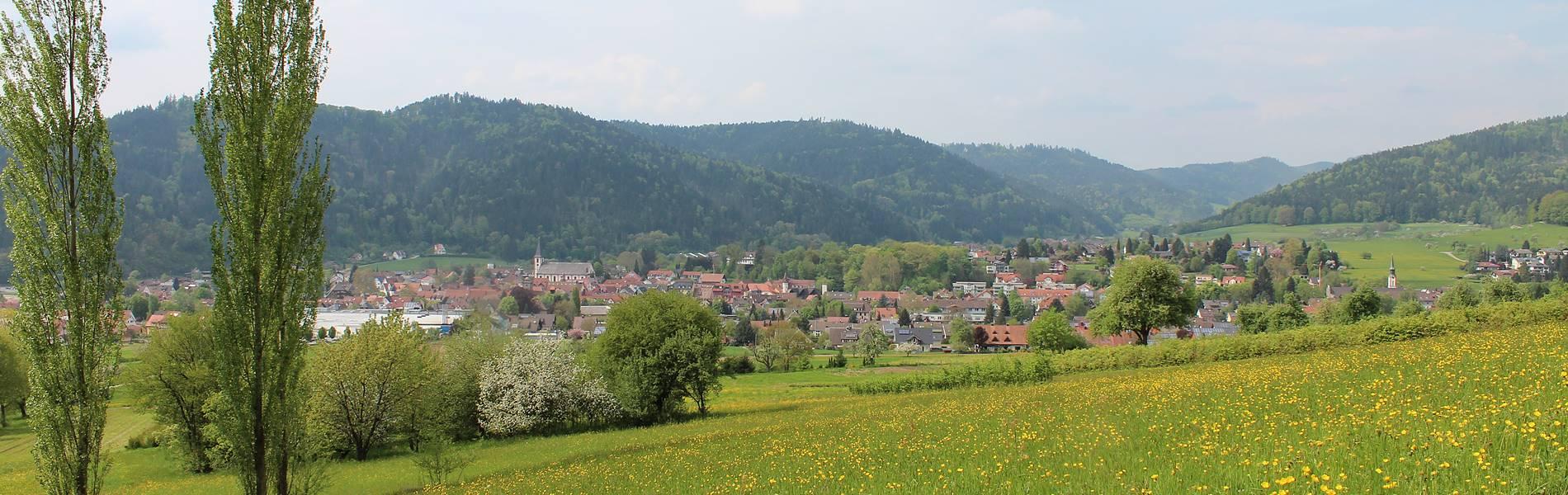 zell-am-harmersbach